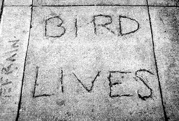 Image:Cement bird lives.jpg